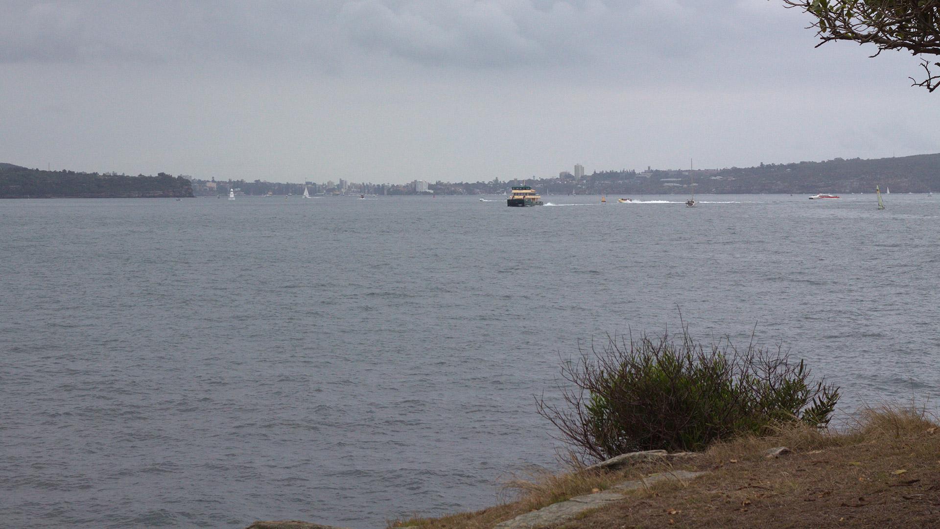 Sydney harbour paddle