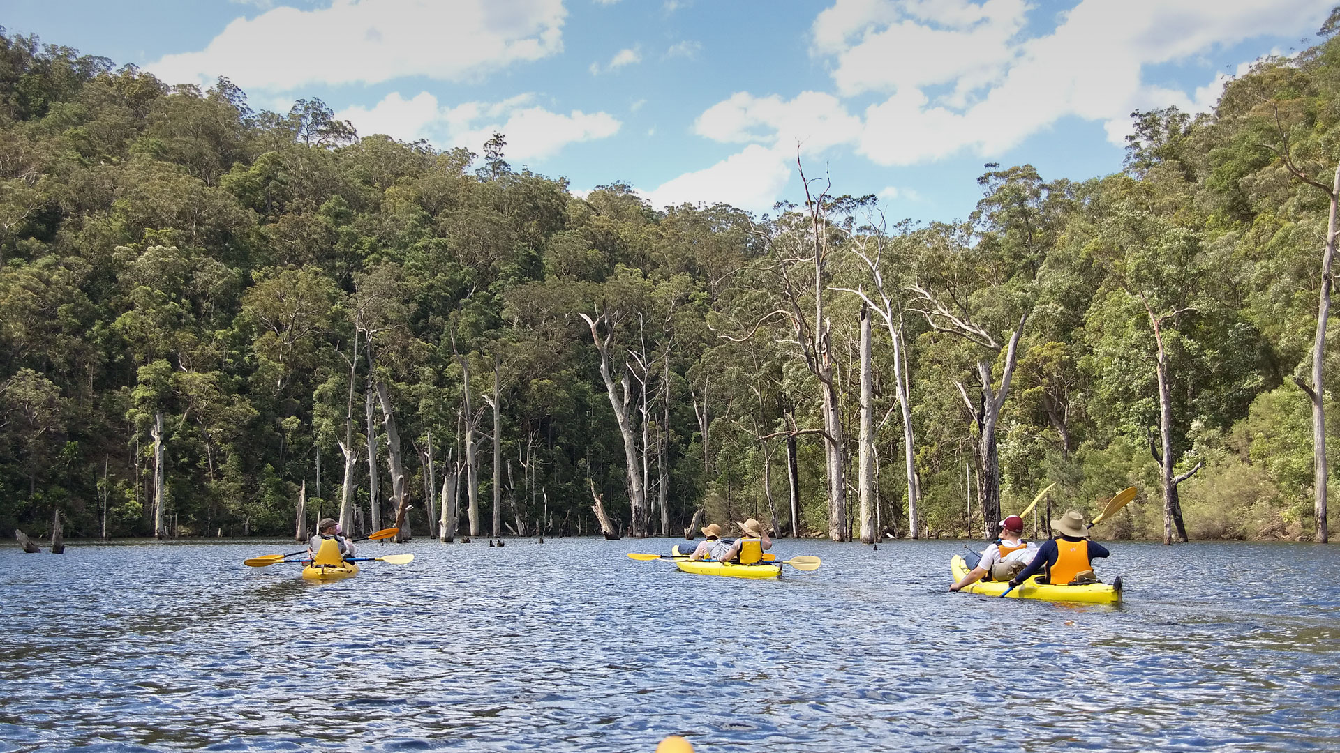 Kayaking & Paddle Tour Sydney Harbour, Manly, and Pittwater